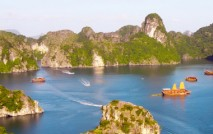UP AND COMING MOL's Vietnam subsidiary is opening an office in the Quang Ninh Province of northeastern Vietnam, the company's eighth in the country.