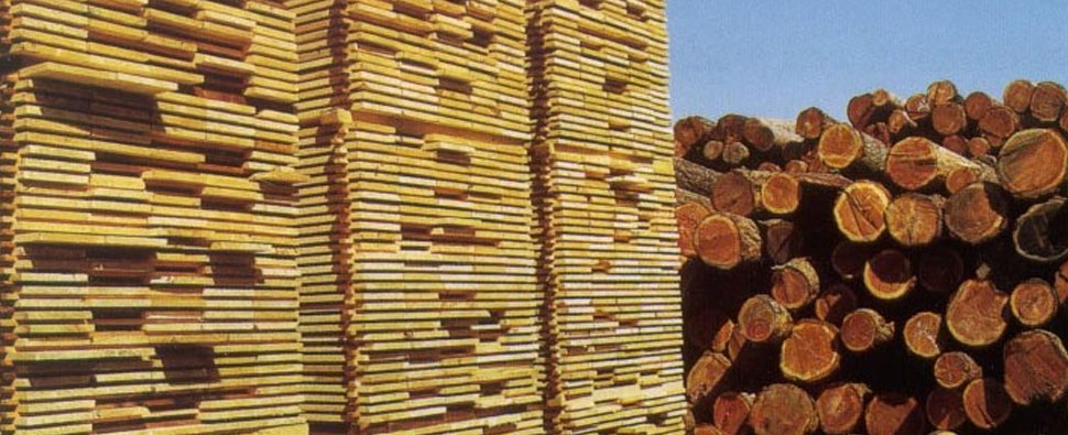 U s lumber exporters lose china market share global for Wood in chinese