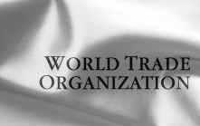 ARGENTINA TRADE: Country Will Likely Maintain Modified Import Restrictions Despite WTO Ruling