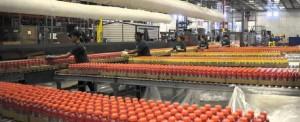 Ground Broken for New Illinois Distribution Center