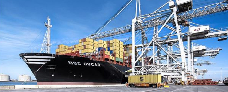 Work will allow MSC ships to handle more shipments of export cargo and import cargo in international trade.