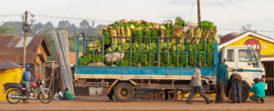 UNCTAD: A Difficult Year For African Economies