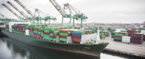Ocean Logistics 2019: Digitization Continues to Lead Trends