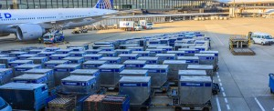 Berlin and Hamburg Added to United Cargo TempControl Network