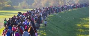 Migrant Crisis Causing Disruption to Cargo Transportation Across Europe
