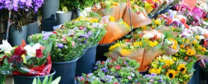 Panalpina to Acquire Kenya-based Airflo From Dutch Flower Group