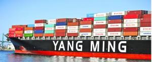Taiwanese Companies in Multimodal Alliance