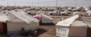 DP World Joins UN Emergency Team