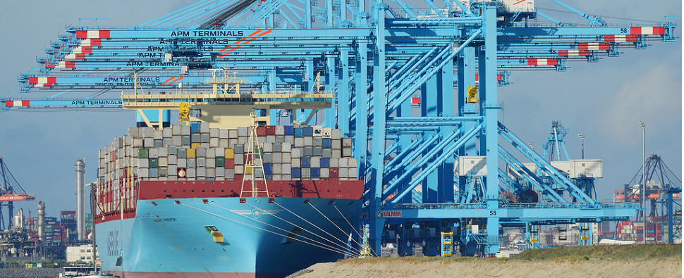 Digital platform will allow port to handle more shipments of export cargo and import cargo in international trade.