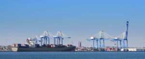 January Ends with Record Container Volumes for SC Ports Authority